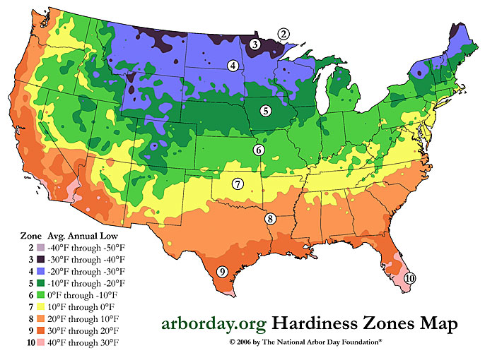 Zone Map Evergreen Seedlings For Sale